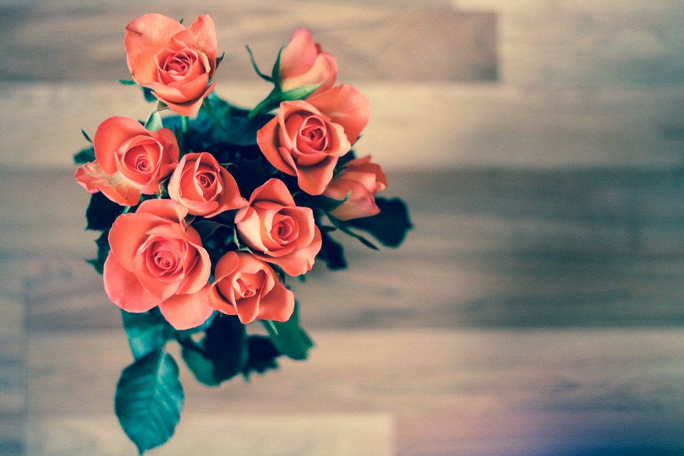 Najpopularniejsze kwiaty domowe
