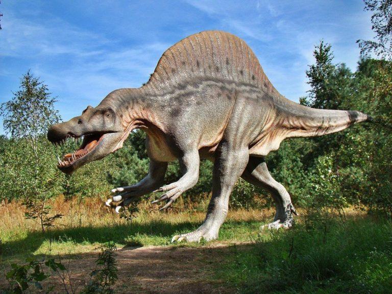 Park dinozaurów w Krasiejowie to moc atrakcji dla całej rodziny
